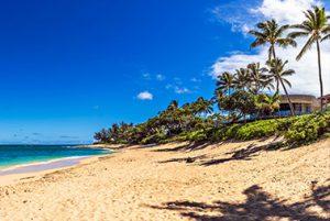 North Shore Oahu Van for Rent