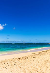 Oahu Beach Tour and Shuttle