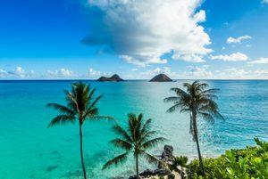 Kailua & Lanikai Beach Pickup