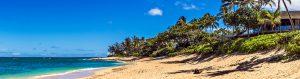 Turtle Bay Oahu Transport