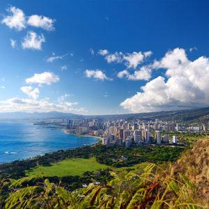 Custom Oahu Tours